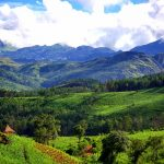 Eastern Highlands Zimbabwe - Travel to Zimbabwe with Vayeni