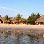 plan a trip to Mozambique